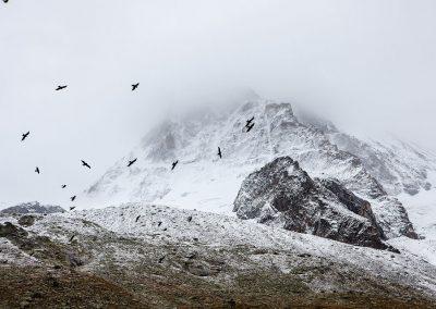 mountain-slide
