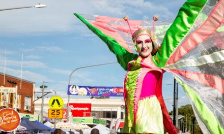 Revamped Ingleburn Alive draws appreciative crowds